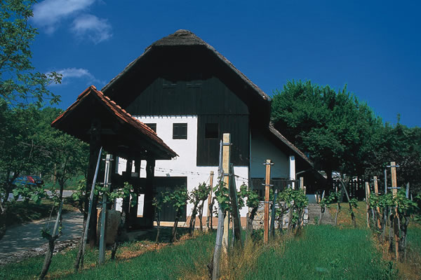 Vineyard cottage - Krka Hram